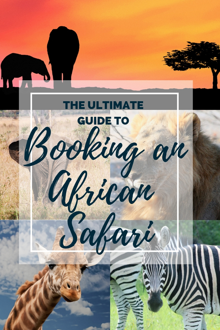 Ultimate Guide to booking an African Safari