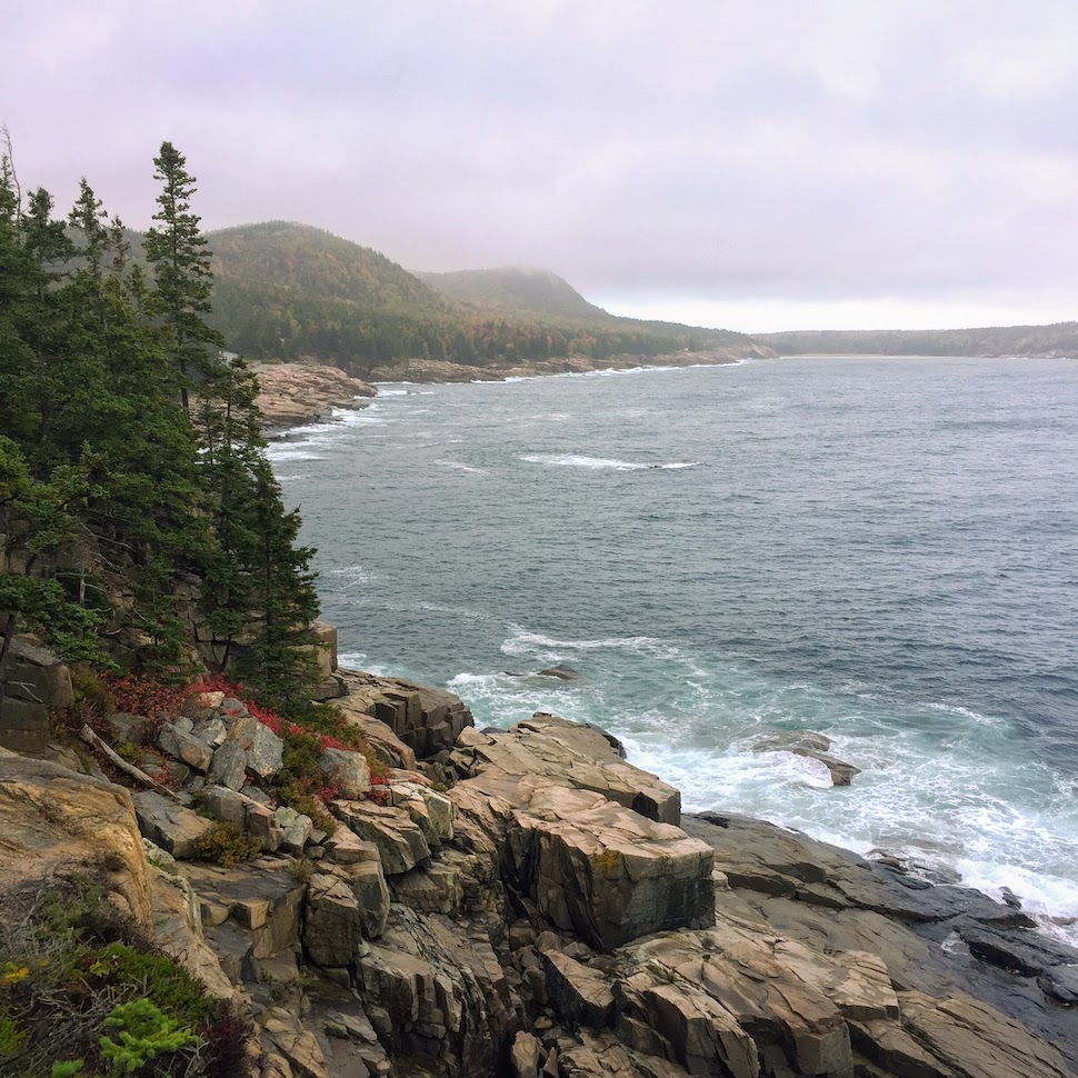 View from the Ocean Path in Acadia National Park
