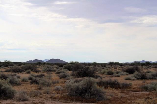 Landscape taken from the road near Hohokam Pima National Monument