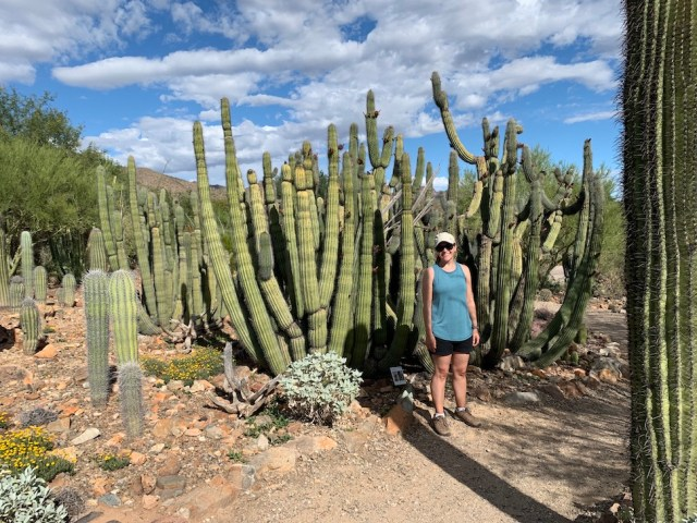 Park Chasers with Organ Pipe Cactus