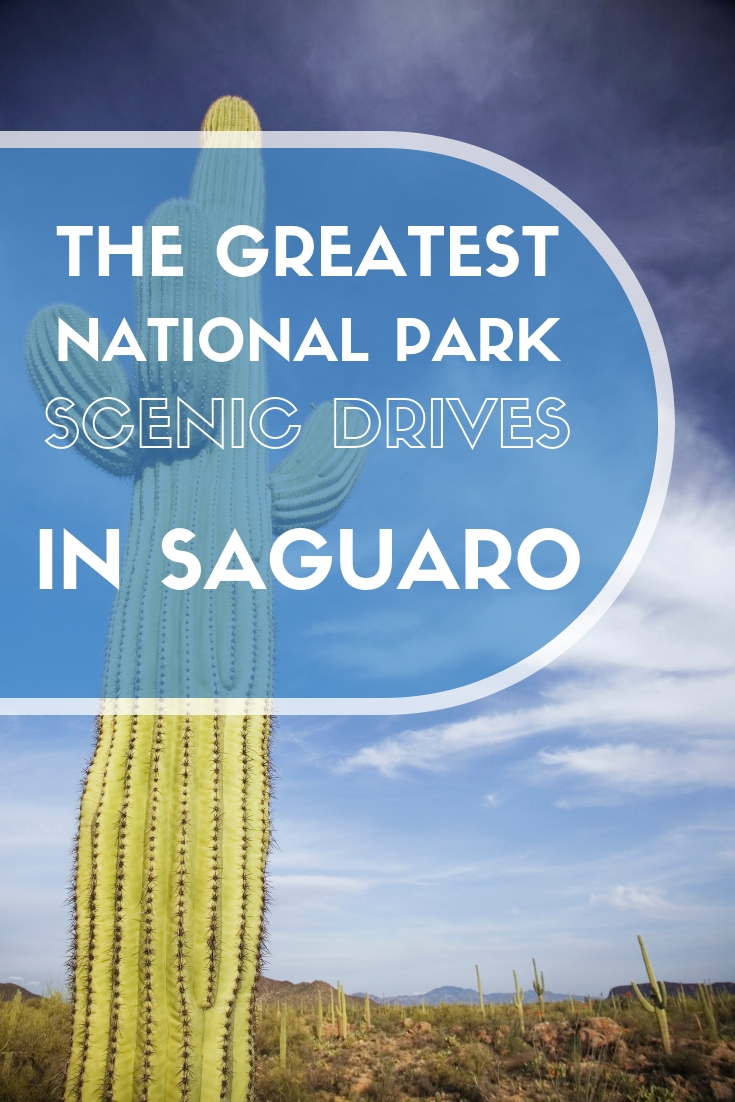 Scenic Drives in Saguaro National Park