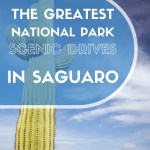 National Park Scenic Drives in Saguaro National Park