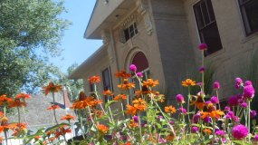 mainstreet center parker colorado arts recreation historic building