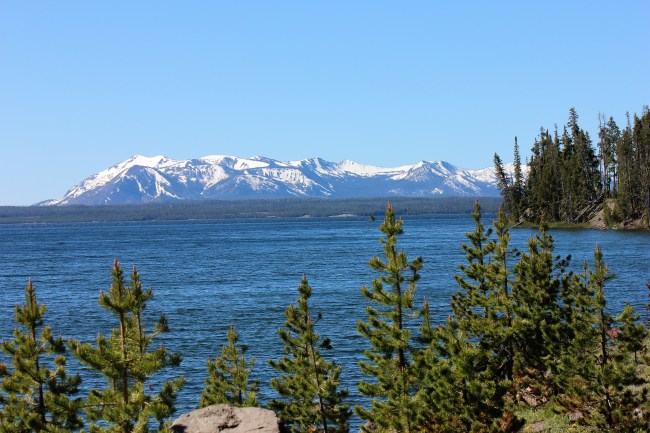 mountain, lake, pine trees
