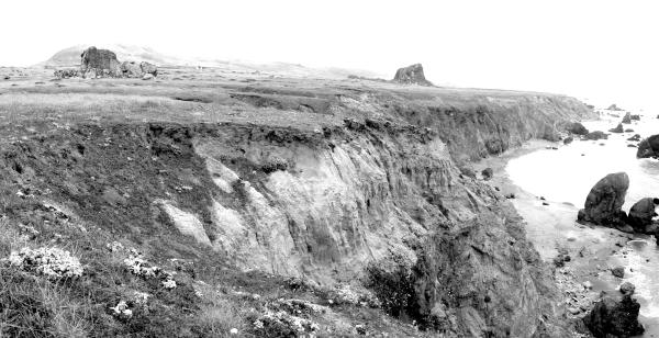 Panoramic View of the Mammoth Rocks Site and the Eroding Coastal Bluff. Photo by Breck Parkman, 2004.