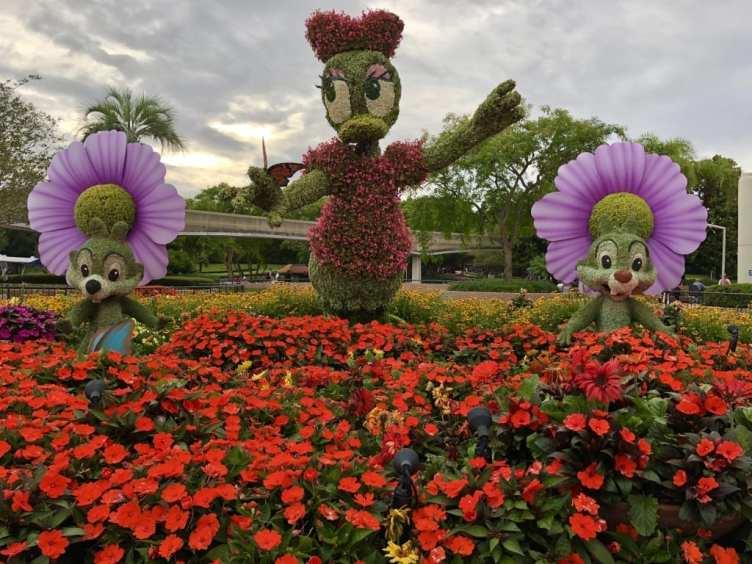 Daisy Topiary