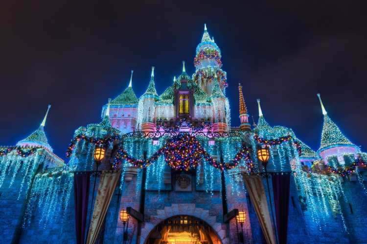 Sleeping Beauty Lights Christmas