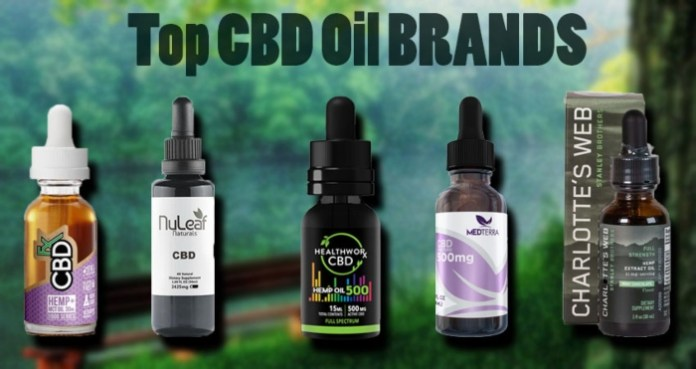 Top CBD Oil Brands