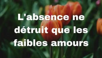 Citations D Amour Sur Le Manque Parler D Amour
