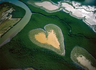 Cuore di Voh, Nuova Caledonia, Francia (© Yann Arthus-Bertrand)
