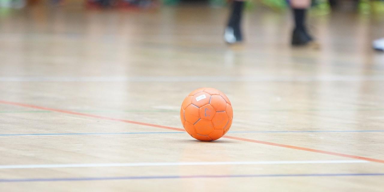 Les Handballeurs(es) de la Loire reprendront la compétition début février