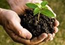 Unione Pedemontana e Composharing: ecco la soluzione per rendere le nostre comunità sempre più green