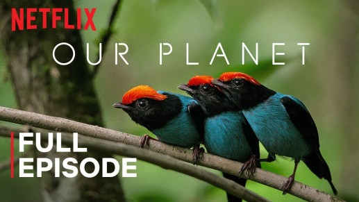 our planet documentario Netflix a tema ambiente