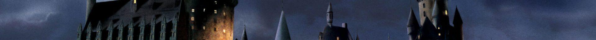 Saga di Harry Potter: discriminazioni e tokenism
