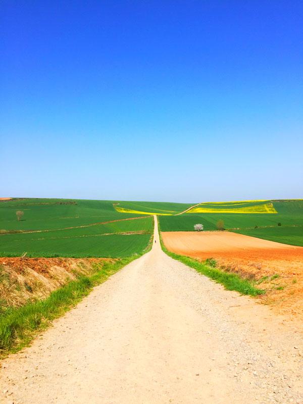 Le tappe del Cammino di Santiago - La Rioja