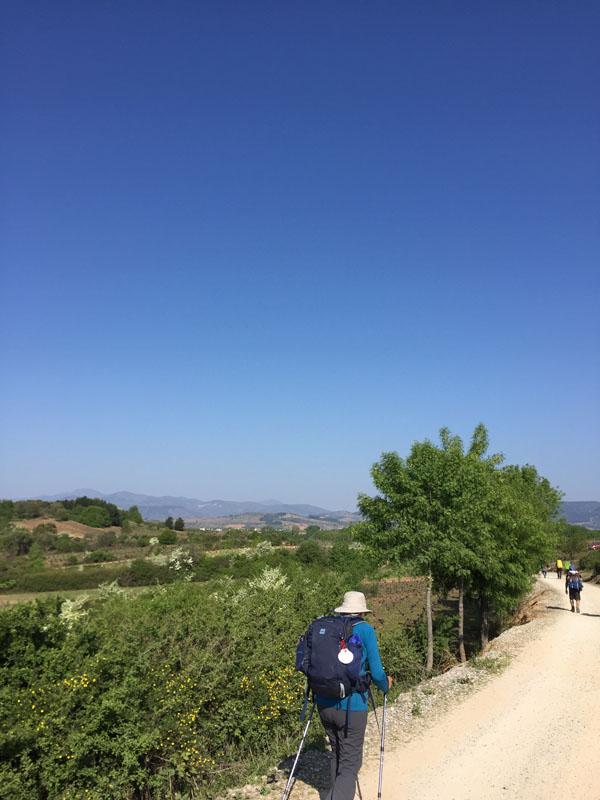 Cammino di Santiago - Pellegrino