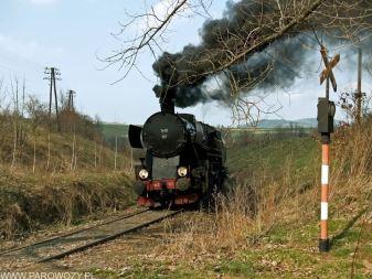 Ty42-107 z pociągiem nr 33300 Tymbark-Dobra koło Limanowej 6.04.2014. Fot.: Łukasz Alczewski.