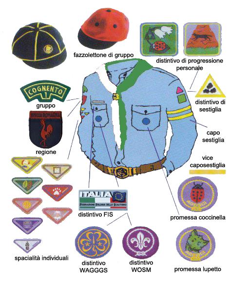 Uniforme Scout - Lupetti-Coccinelle