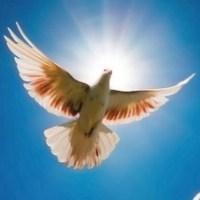 Oggi preghiera carismatica con la comunità Maria