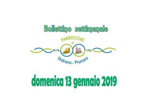 Bollettino Vedrana, Cento, Prunaro 13 gennaio 2019