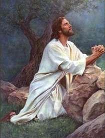 Jesús y la oración.Huerto de los olivos