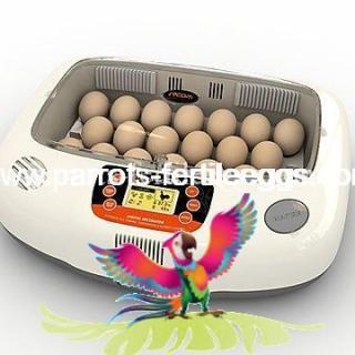 Rcom 20 Eggs MAX Automatic Incubator