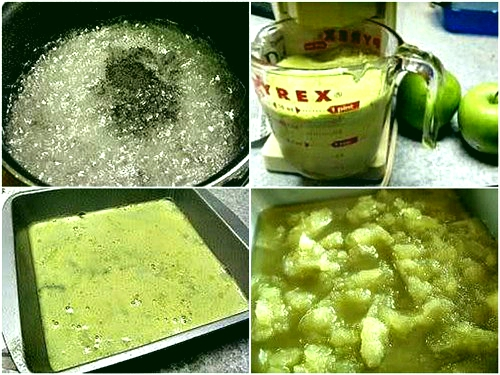 Fresh Green Apple Ice using whole green apples and optional coconut milk/cream for the creamy factor. Forget sorbet or ice cream, this stuff is the nectar of the gods Fat Free, Dairy Free, and Low Sugar. NO Food Color, all natural. #greenapple #greenappleice #coconutmilk #coconutcream #lowsugar #dairyfree #allnatural