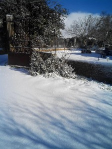 Neve a Partanna-Gianni_Bacile4
