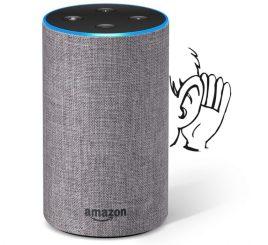 Echo-eavesdropping-768x703