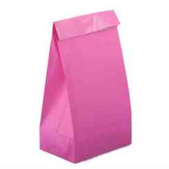 Neon Pink Paper Party Bags - Paper Gift Bags