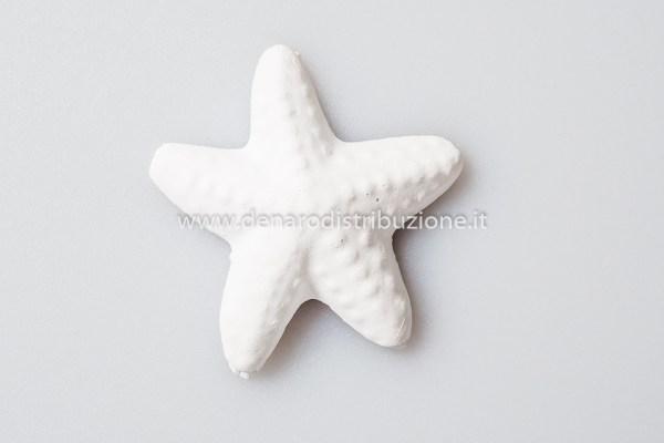 Gessetto Stella Marina (6 pezzi)-0