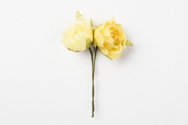 Rosa assortita in giallo (12 pz)-0