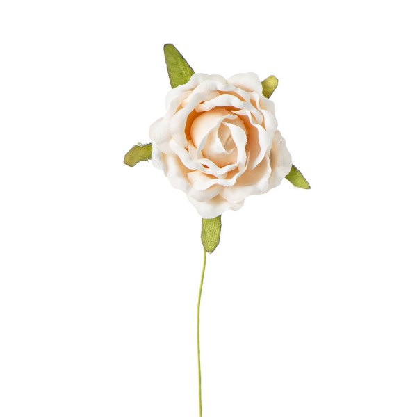 Rosellina decorativa cipria