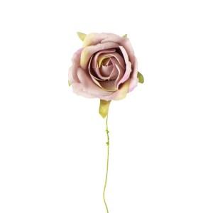 Applicazione rosa media rosa antico