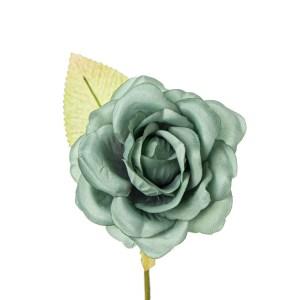 Bocciolo di rosa con foglia colore verde