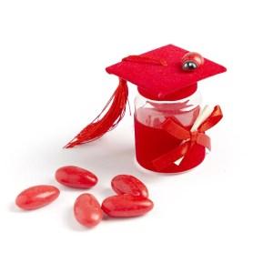 barattolo con cappello laurea rosso con coccinella
