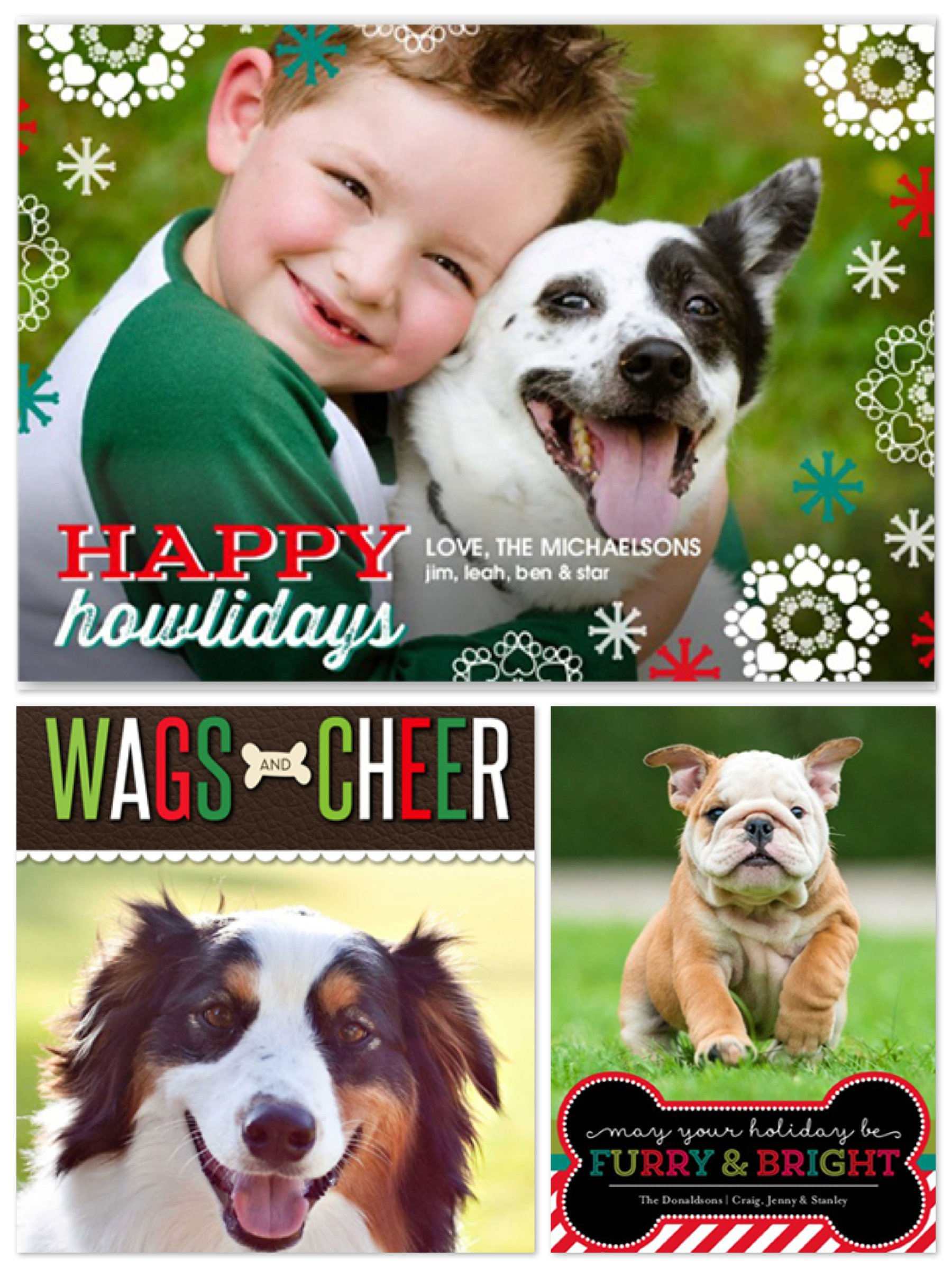 Pet Lover Holiday Photo Cards Dog Amp Cat Christmas Cards