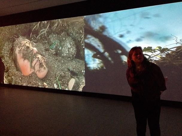 Parya Vatankhah, Metamorphose, video-installation, Pori museum,