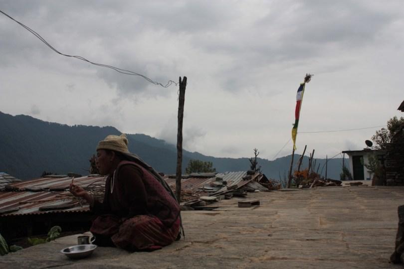 Miradas Himalaya