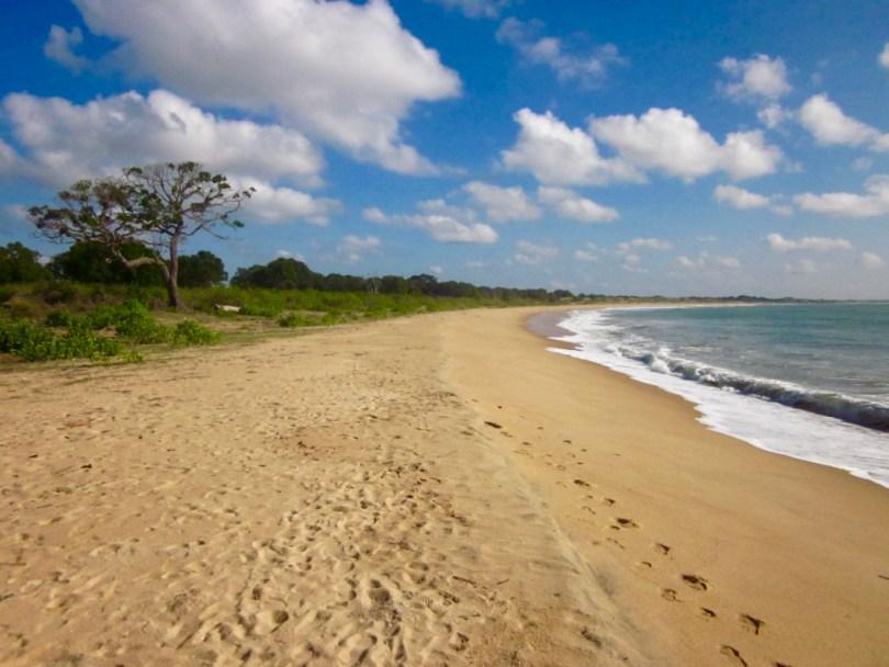 Playas Parque Nacional Yala