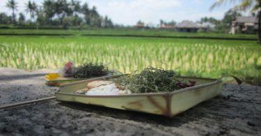 clima en Indonesia