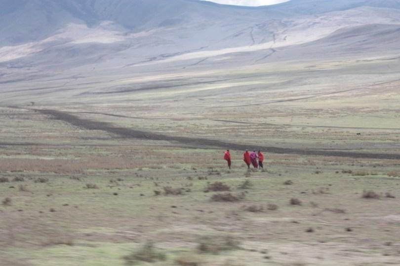 Taranguire Ngorongoro Serengueti masais