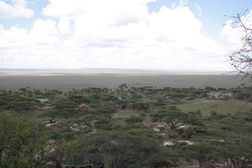 llanura Serengueti
