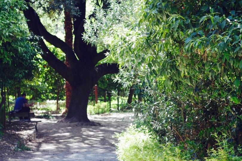 Jardin Nacional