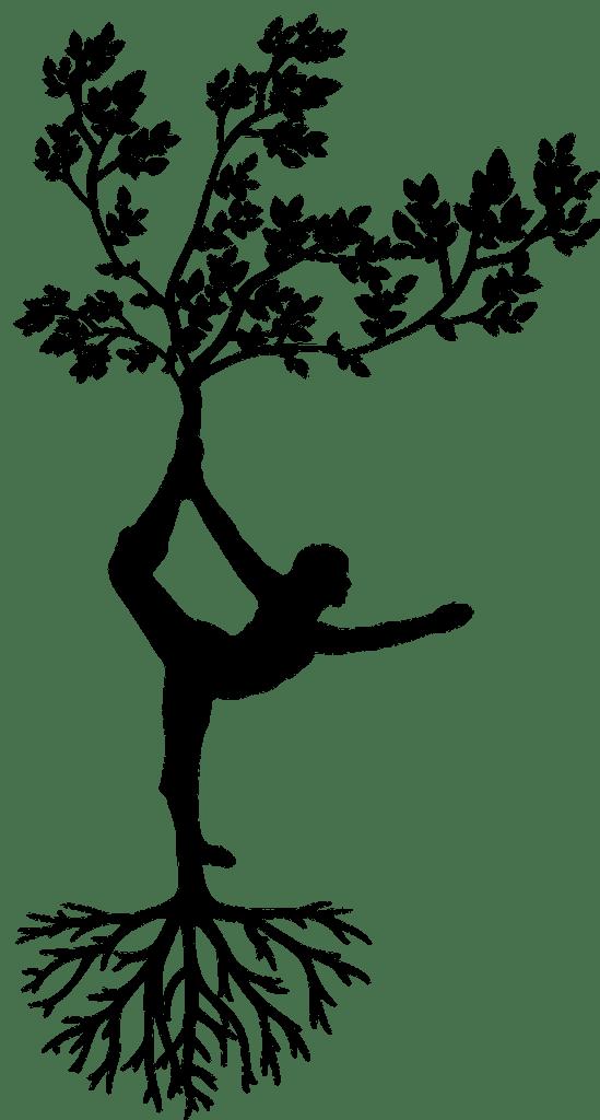 l'ancrage, une question d'équilibre entre racines et créativité