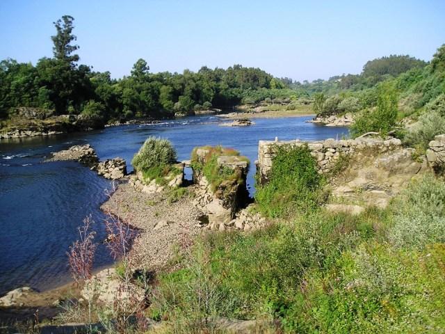Pesqueiras Rio Miño