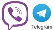 вайбер и телеграм канал и група пчеловодство