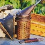 Методы пчеловождения - главный взяток с акации или подсолнуха - создание сильных пчелосемей