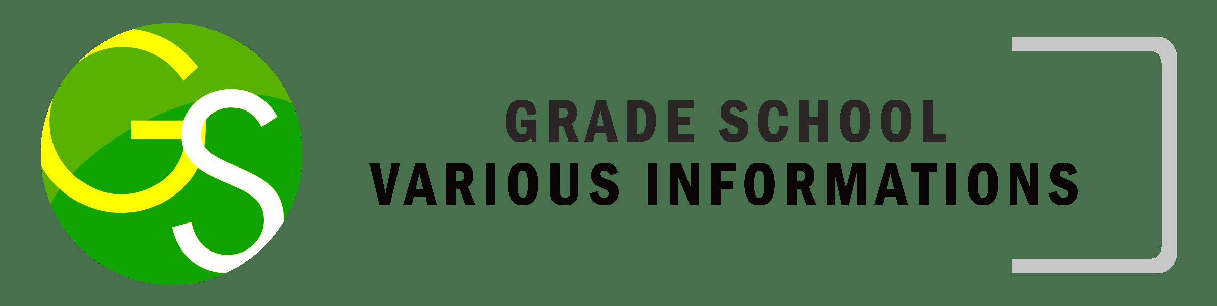 ICO_GS_VariousInfo