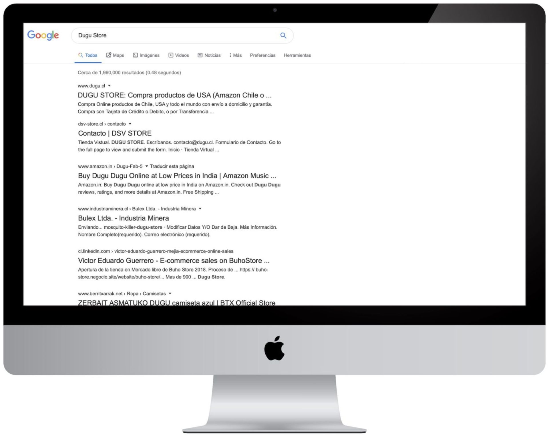 Página Web sin Optimizar